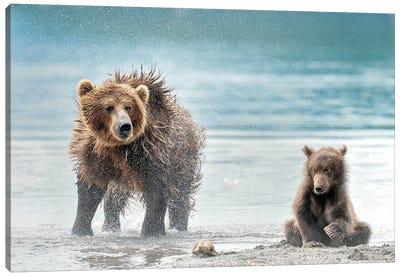 Shaking - Kamchatka, Russia Canvas Art Print