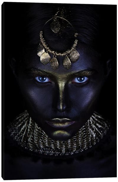 Gold Of Maya Canvas Art Print