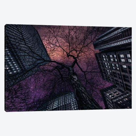 Interstellar Canvas Print #OXM3052} by Jackson Carvalho Canvas Wall Art