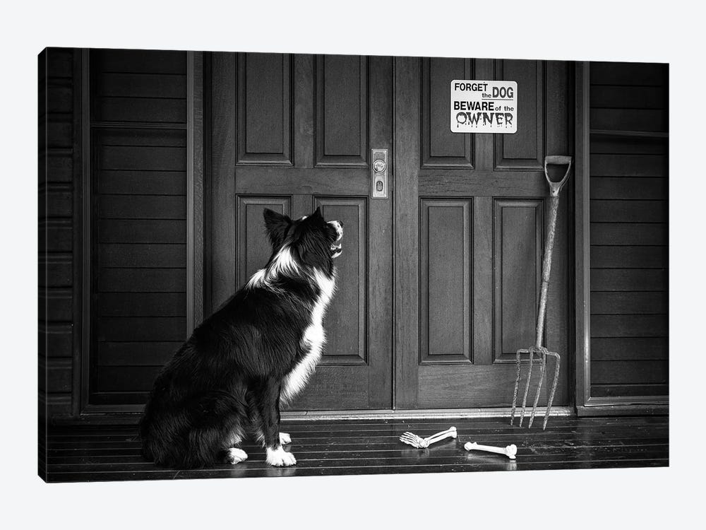 Beware Of The Owner by Jacqueline Hammer 1-piece Art Print