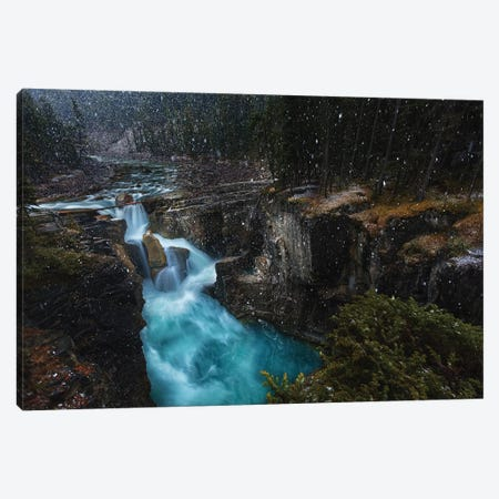 Surprise Canvas Print #OXM3066} by Jerrywangqian Canvas Art