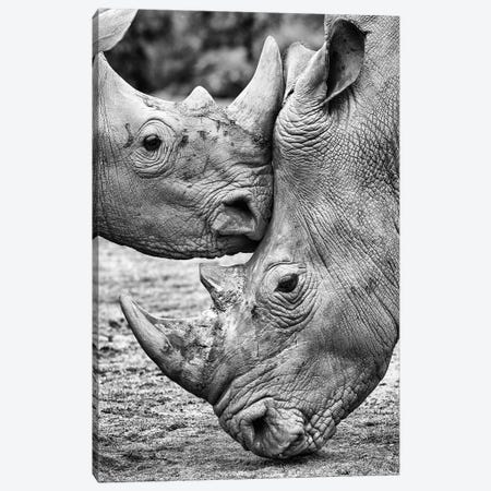 Face To Face Canvas Print #OXM3067} by Jesus Concepcion Canvas Art