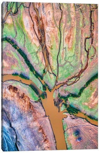 God's Palette Canvas Art Print