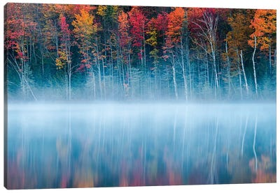 Morning Reflection Canvas Art Print