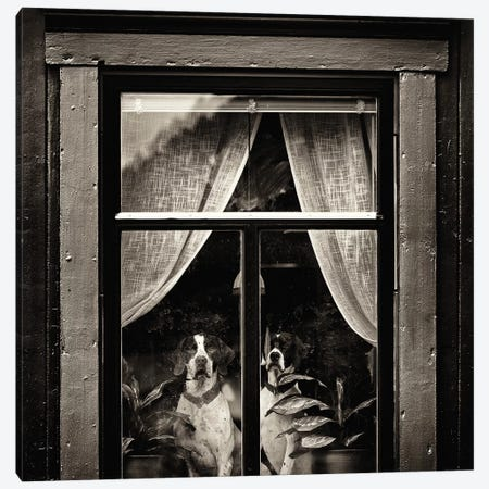The Dogs I Canvas Print #OXM3078} by Julien Oncete Canvas Wall Art