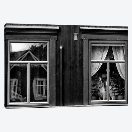 The Dogs II Canvas Print #OXM3079} by Julien Oncete Canvas Art