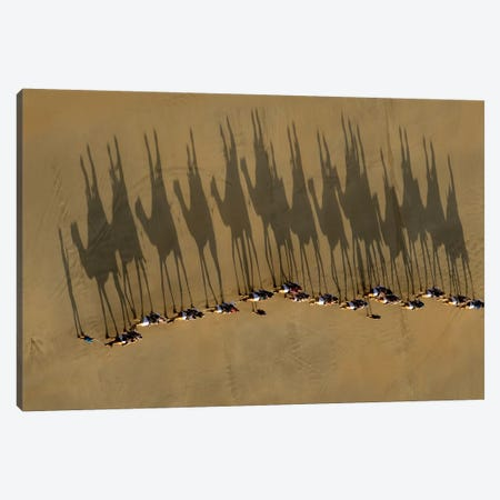 A Journey Of Shadows 3-Piece Canvas #OXM3093} by Louise Wolbers Canvas Art