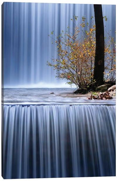 Autumn Interlude Canvas Art Print