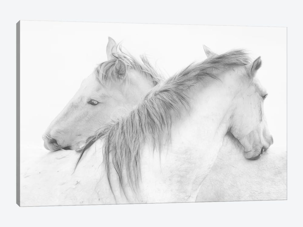 Horses by Marie-Anne Stas 1-piece Canvas Art