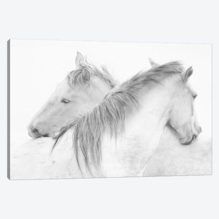 Horses 3-Piece Canvas #OXM3106} by Marie-Anne Stas Canvas Print