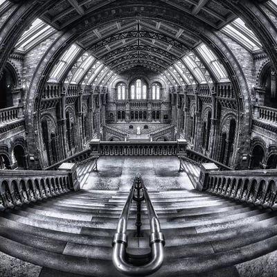 Harry Potter Meets Escher And Darwin Canvas Ar... | Massimo Cuomo ...