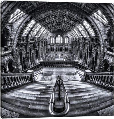 Harry Potter Meets Escher And Darwin Canvas Art Print