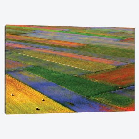 Untitled III Canvas Print #OXM3122} by Massimo Della Latta Canvas Art