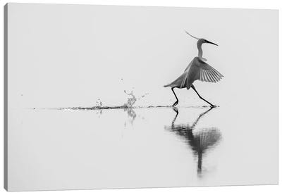 Dancing On The Water Canvas Art Print