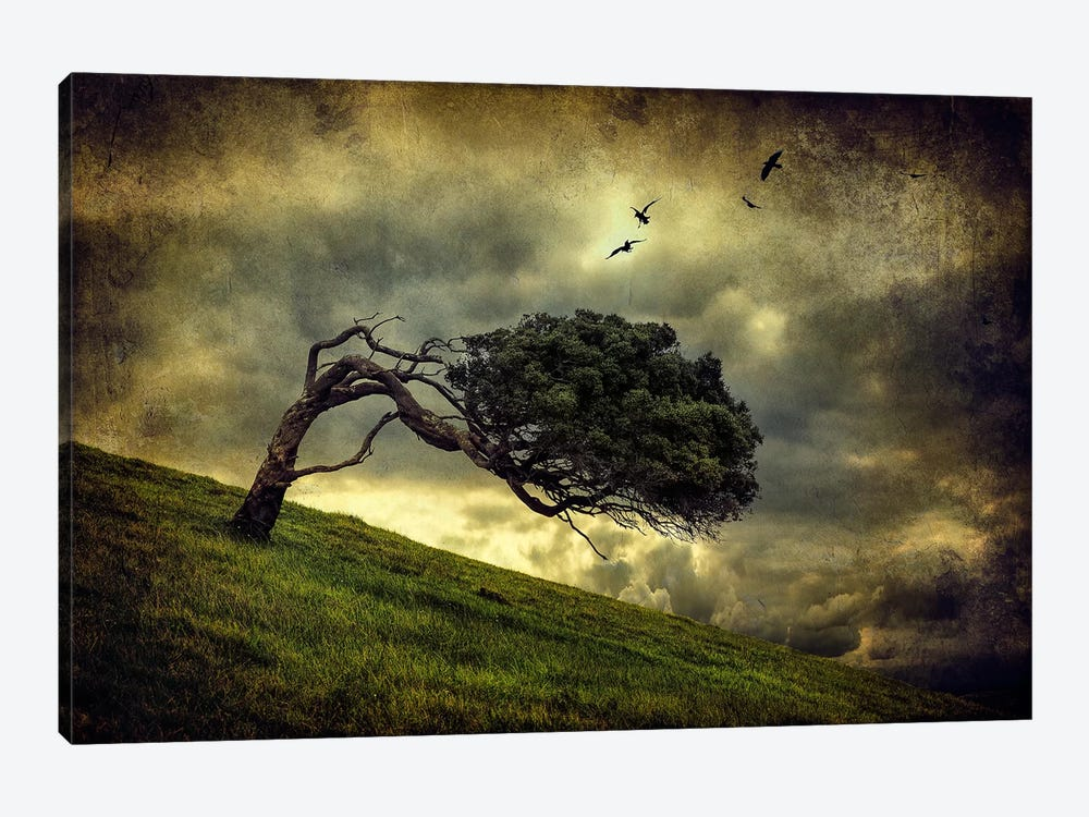 Winds Of Change by Peter Elgar 1-piece Canvas Artwork