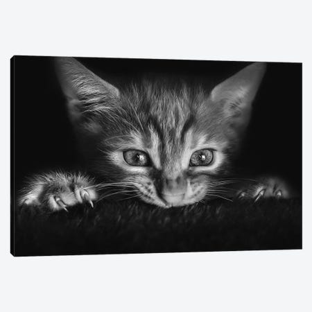 At The Movies Canvas Print #OXM3136} by Monte Pi (10Catsplus) Canvas Wall Art