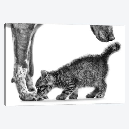 Smell Me 3-Piece Canvas #OXM3137} by Monte Pi (10Catsplus) Canvas Artwork