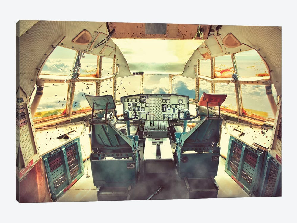 Flying Dead Plane 1-piece Canvas Print