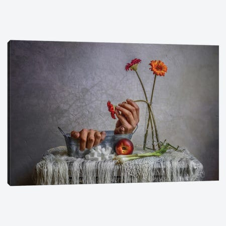 Still Life Canvas Print #OXM313} by Haik Ahekian Canvas Artwork