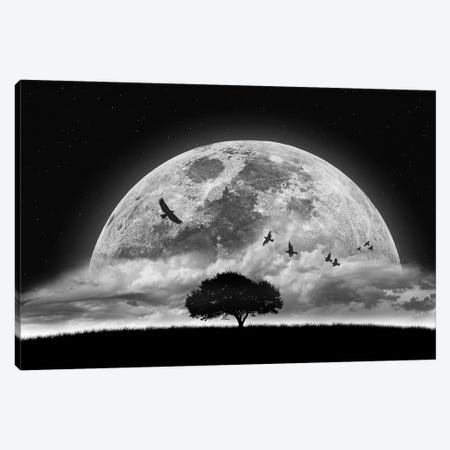 A Dream Canvas Print #OXM3140} by Nasser Osman Canvas Art