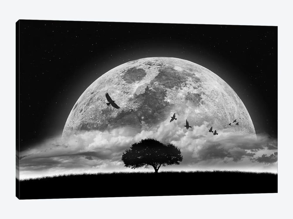 A Dream by Nasser Osman 1-piece Canvas Art