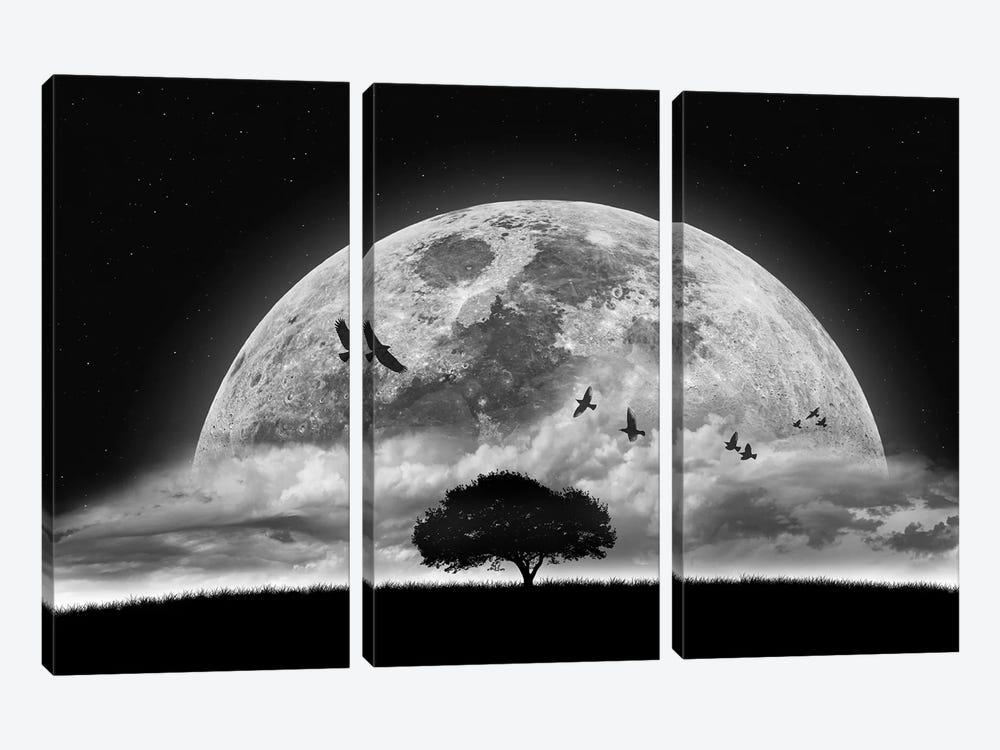 A Dream by Nasser Osman 3-piece Canvas Art