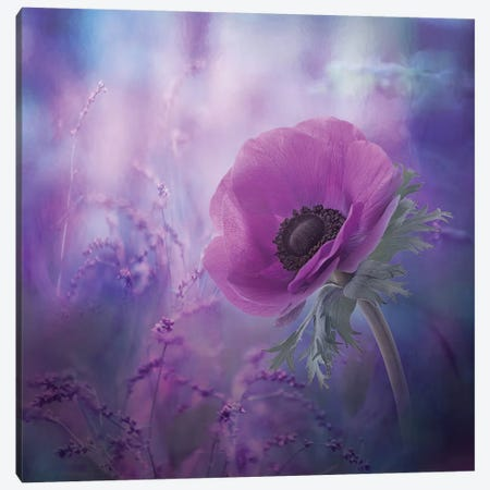 Ecstasy Canvas Print #OXM3142} by Natalia Simongulashvili Canvas Artwork