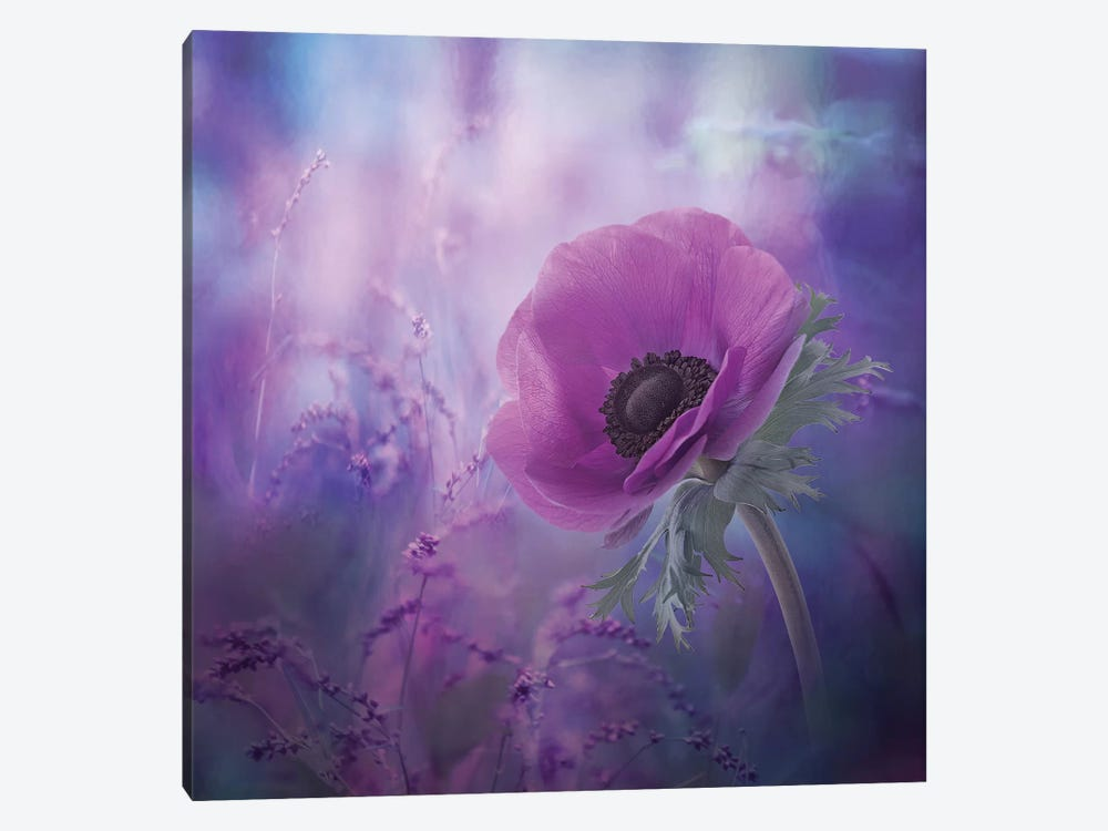Ecstasy 1-piece Canvas Wall Art