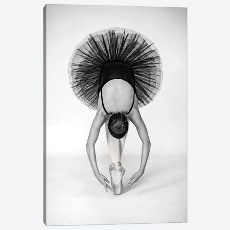 Ballet Technique Canvas Print #OXM3153} by Pauline Pentony Art Print