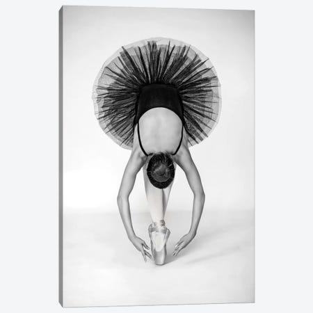 Ballet Technique 3-Piece Canvas #OXM3153} by Pauline Pentony Art Print