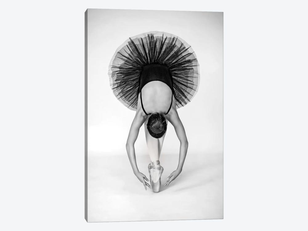 Ballet Technique by Pauline Pentony 1-piece Canvas Art