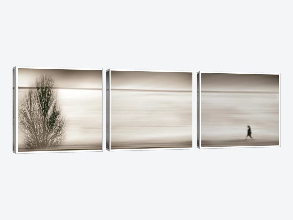 Seeking The Invisible by Paulo Abrantes 3-piece Art Print