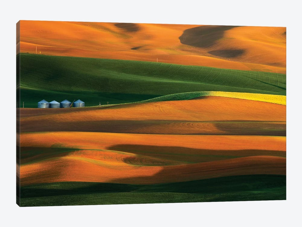The Colorful Land by Phillip Chang 1-piece Canvas Wall Art