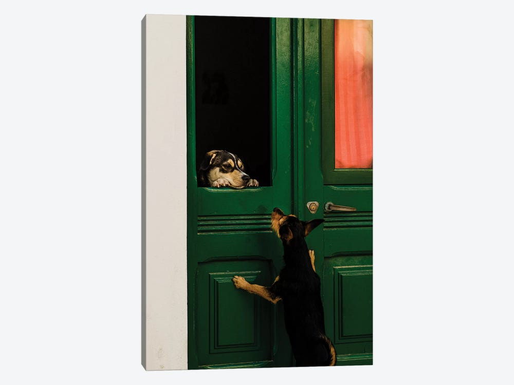A Moment Of Love by Piera Polo 1-piece Canvas Print