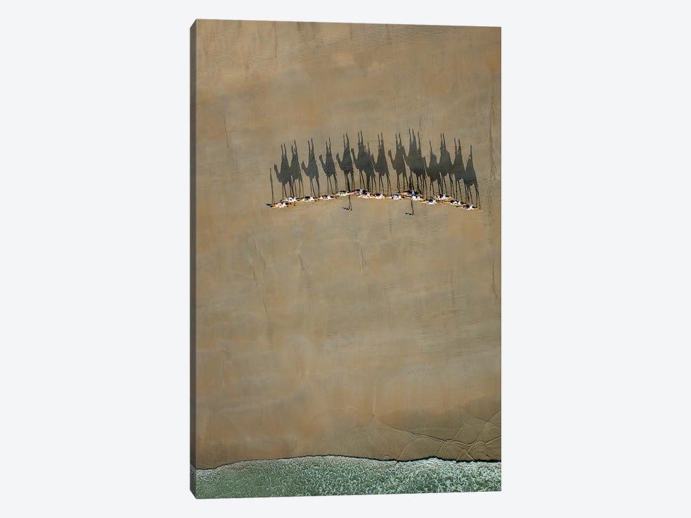 Broome Camel Train by Renee Doyle 1-piece Art Print