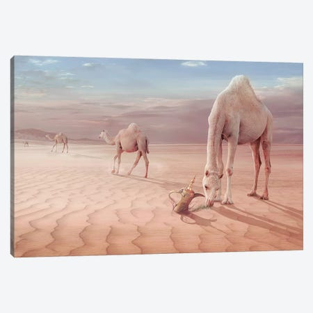 Camel's Trip Canvas Print #OXM3198} by Sulaiman Almawash Art Print