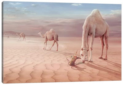Camel's Trip Canvas Art Print
