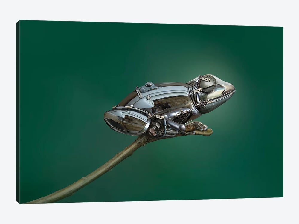 Frog by Sulaiman Almawash 1-piece Art Print