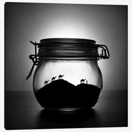 A Jar Of Sugar Sand Canvas Print #OXM3227} by Victoria Ivanova Canvas Art