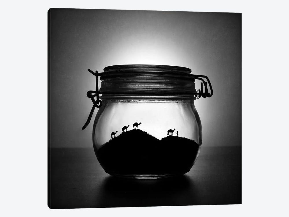 A Jar Of Sugar Sand by Victoria Ivanova 1-piece Canvas Print