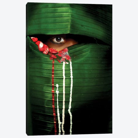 Mysterious Eye Canvas Print #OXM3246} by Adithya Zen Canvas Wall Art