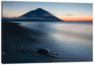 Fuji Etorofu Canvas Art Print