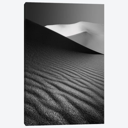 An Ice Hill In Desert Canvas Print #OXM3275} by Ali Barootkoob Canvas Art Print