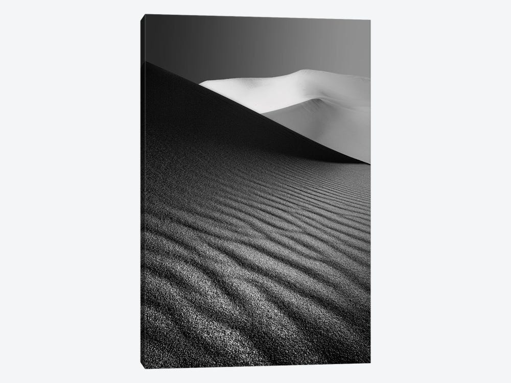An Ice Hill In Desert by Ali Barootkoob 1-piece Canvas Artwork