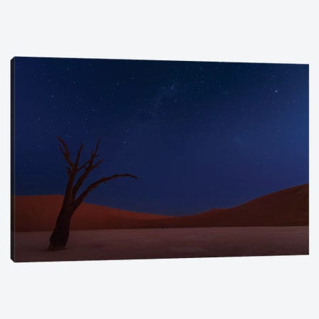 Stars And Dunes Canvas Print #OXM3276} by Ali Khataw Canvas Art Print