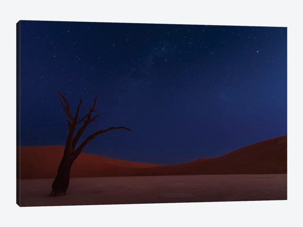 Stars And Dunes by Ali Khataw 1-piece Canvas Print