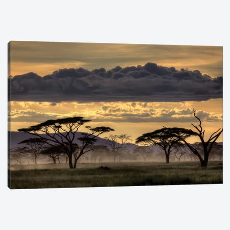 Good Evening Tanzania Canvas Print #OXM3283} by Amnon Eichelberg Canvas Print