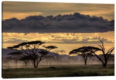 Good Evening Tanzania Canvas Art Print
