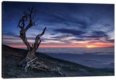 Beyond The Sky Canvas Art Print