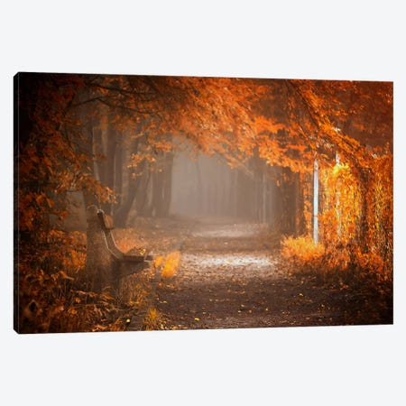 Waiting To Fall Canvas Print #OXM330} by Ildiko Neer Canvas Wall Art